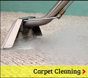 carpet-cleaning-houston-button